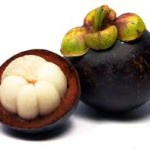 Side Effects of Garcinia Cambogia