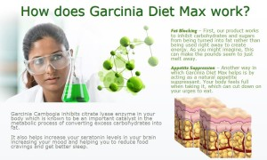 Best Garcinia Cambogia review