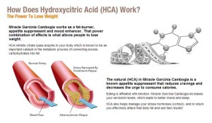 Hydroxycitric.HCA